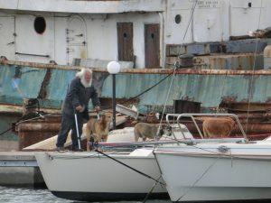 Cheffe mit seinen drei Hunden und seinem lebenslangen Bauprojekt (Hintergrund), Marina del Sol in Cagliaria